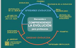 ensenar_evolucion