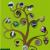 El Árbol de la Vida: Sistemática y evolución de los seres vivos